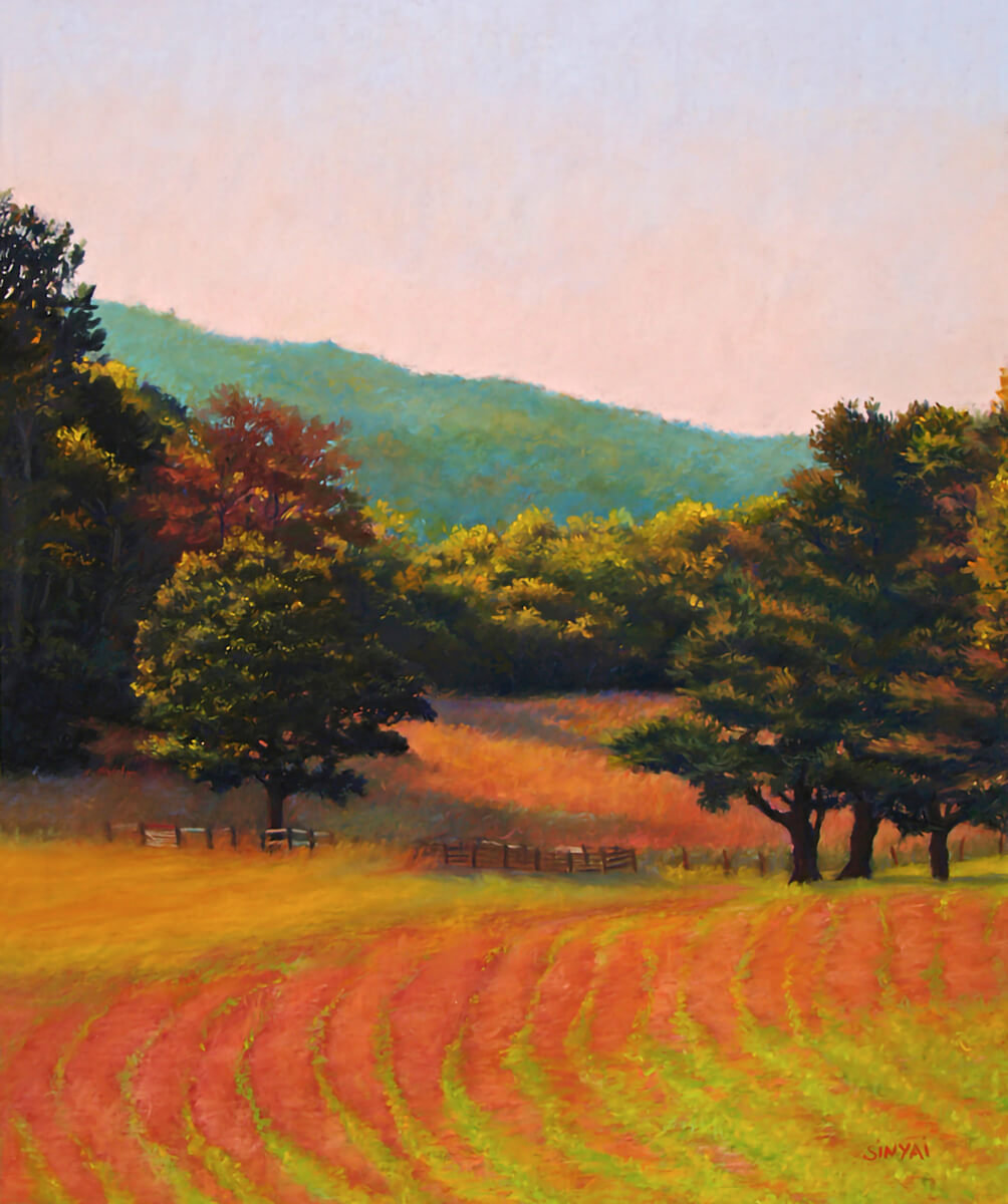 Paintings by Susan Meyer Sinyai, Asheville NC